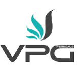 Visionary Promotions Group Inc