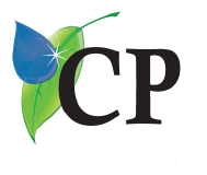 CP Profesional Services